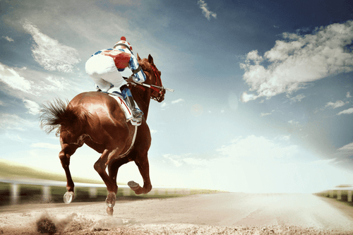 Best Betting Tips for Horse Racing