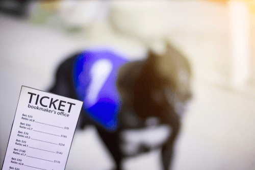Top 4 Types of Bookmakers
