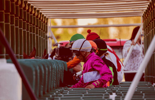 Basic Horse Racing Australia