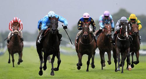 Horse Racing Whip Ban AU