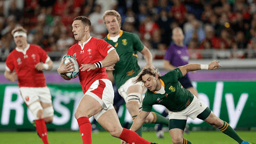 Wales v South Africa Match Highlights