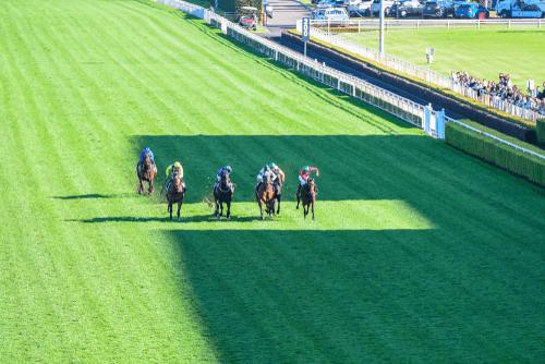 Horse Race Bet Strategy